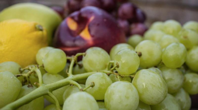 frugt til slowjuicer